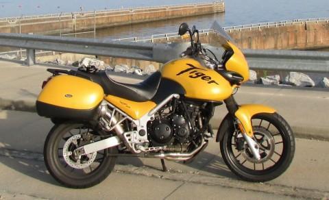 2005 Triumph Tiger 955i for sale